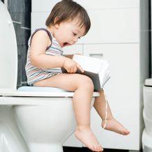 Redutor Sanitário Dobrável Comfort Seat Multikids Baby - BB158
